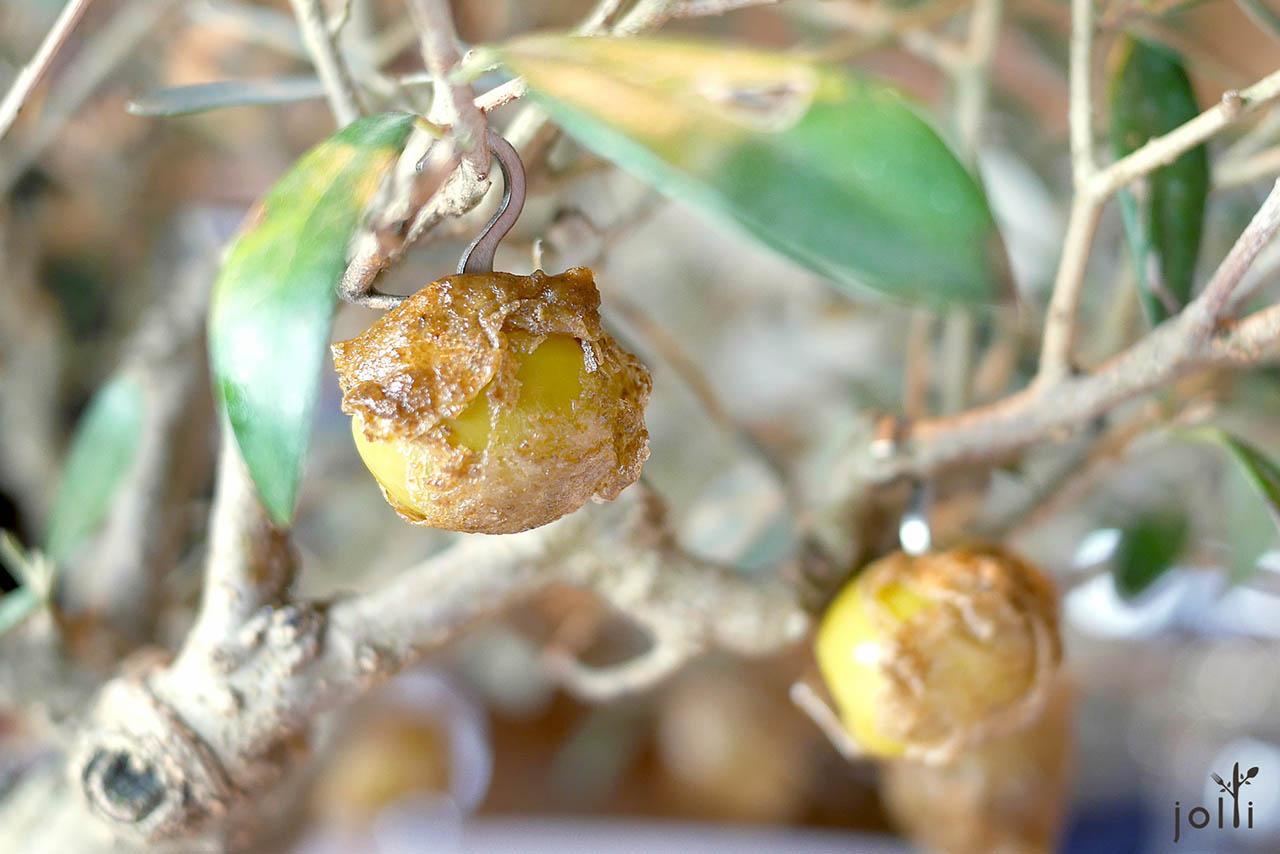 焦糖橄榄-鯷鱼馅料