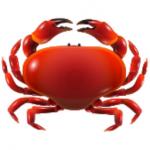 19-crab