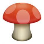 7-mushroom