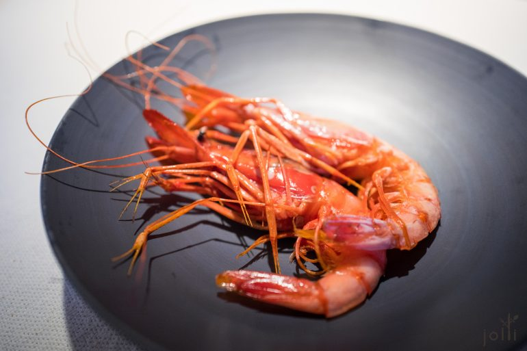 Palamos大红虾
