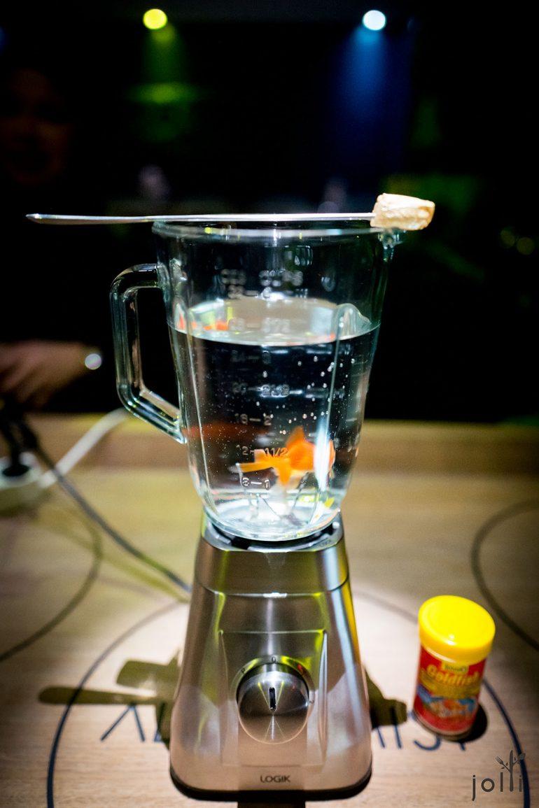 一条在搅拌机游泳的金鱼
