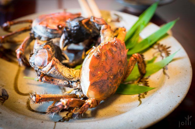 藻屑蟹,又叫日本绒螯蟹