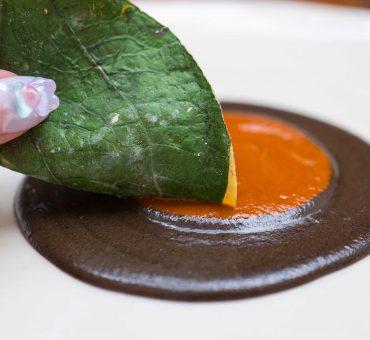 墨西哥城|Pujol-墨西哥料理革命英雄的世界知名食府