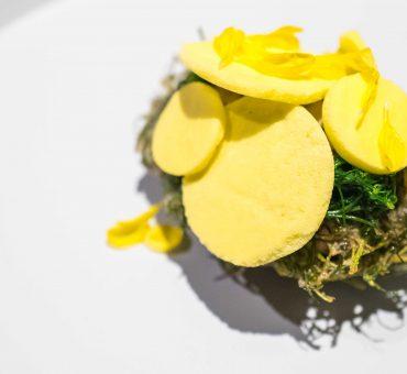 東京|Florilège -蛻變新起點的兩星日式法菜餐廳