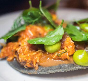 墨西哥城|Máximo Bistrot -复杂纯粹的法式墨西哥料理餐馆