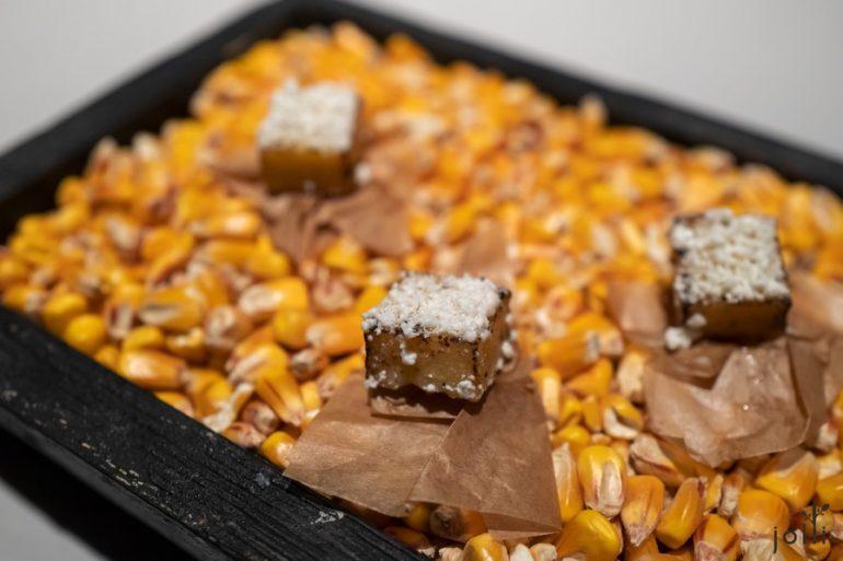 玉米糕佐乾奶及煙燻培根