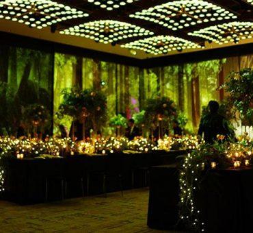 東京|Sugalabo X CHIUnE X été - 我的8手聯彈婚宴