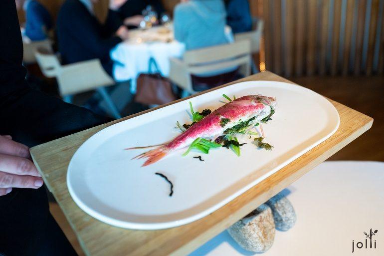 蒸海藻和海葵塞鯔魚
