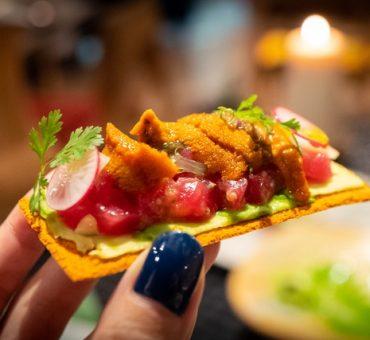 巴塞罗那|Hoja Santa -  Albert Adrià与墨西哥大厨的一星餐厅
