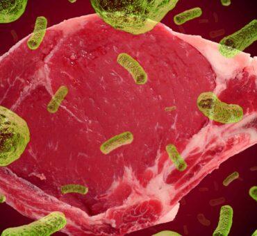 吃漢堡包為何容易食物中毒? -  這次請來肉專家伍餐肉為大家分析,讓食客真正的把握住自己的健康!